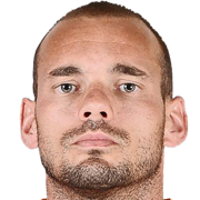 Wesley SNEIJDER Photo