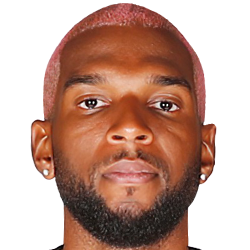 Ryan BABEL Photo