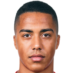 Youri TIELEMANS Photo